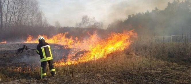 За три дні пожежники Львівщини здійснили пів сотні виїздів на гасіння пожеж  сухої трави – Бориславська міська рада