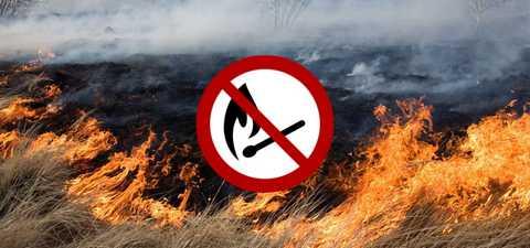 Інформація про шкідливість від спалювання сухої рослинності – Бориславська  міська рада